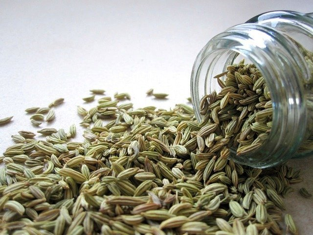 What is a Fennel Seed