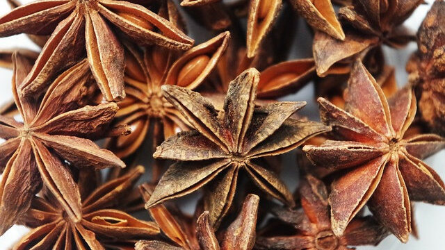 What is anise herb
