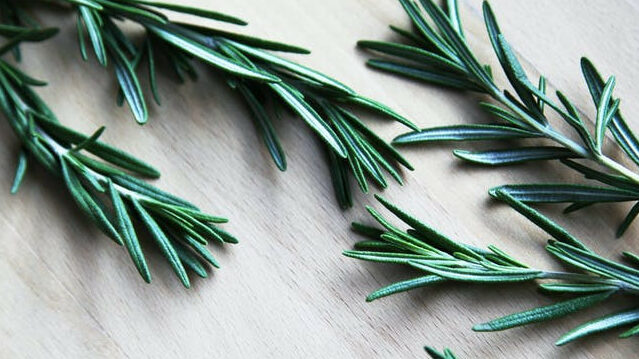 What Is Rosemary Herb